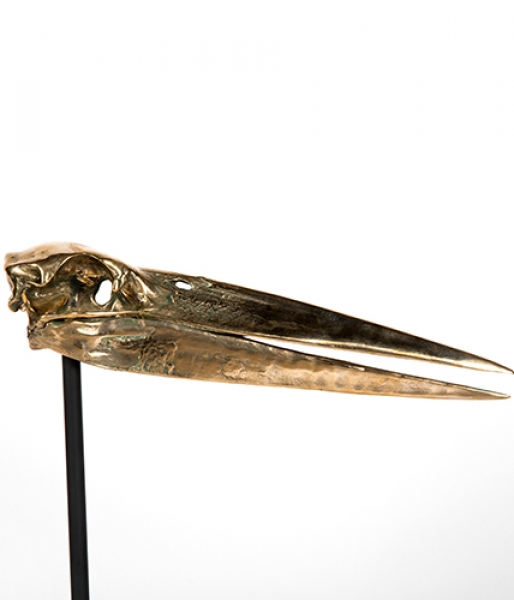 Bronze Stork Skull by Ashley Tudor